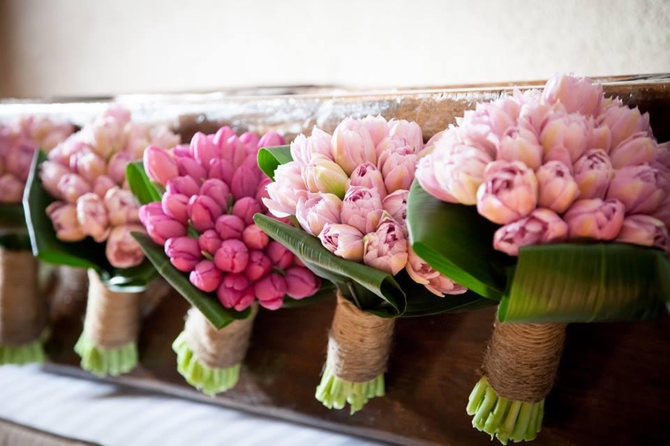 Flower tulips gif im 2.jpg